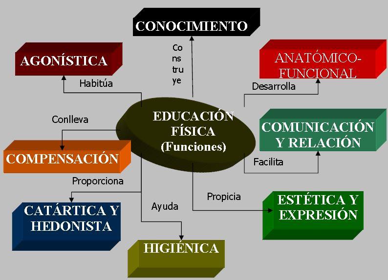 Funciones De La Educación Física Educación Metodología Didáctica Tafad Tafad Y Cursos