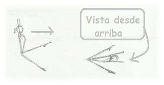Frontal Gimnasia
