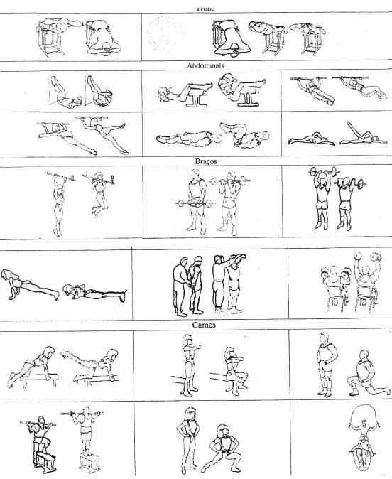 Ejercicios desaconsejados en actividad f sica for Ejercicios de gimnasia