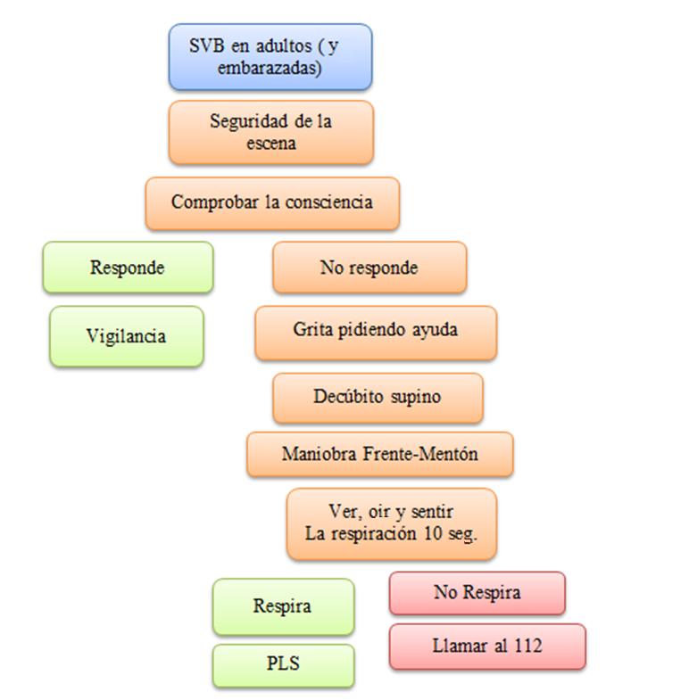 Socorrismo esquema RCP