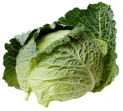 Verduras y Hortalizas Calorías, Lípidos, Proteínas e Hidratos de Carbono