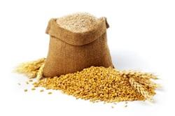 Cereales y Derivados Calorías, Lípidos, Proteínas e Hidratos de Carbono