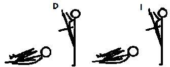 Sesion Circuito Flexibilidad y Resistencia