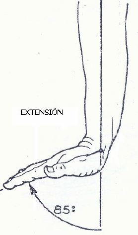 Extensión de la Muñeca