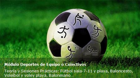 Deportes de Equipo o Colectivos